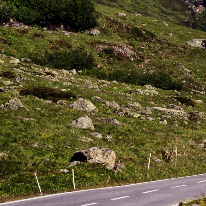 foto_01_winding_road